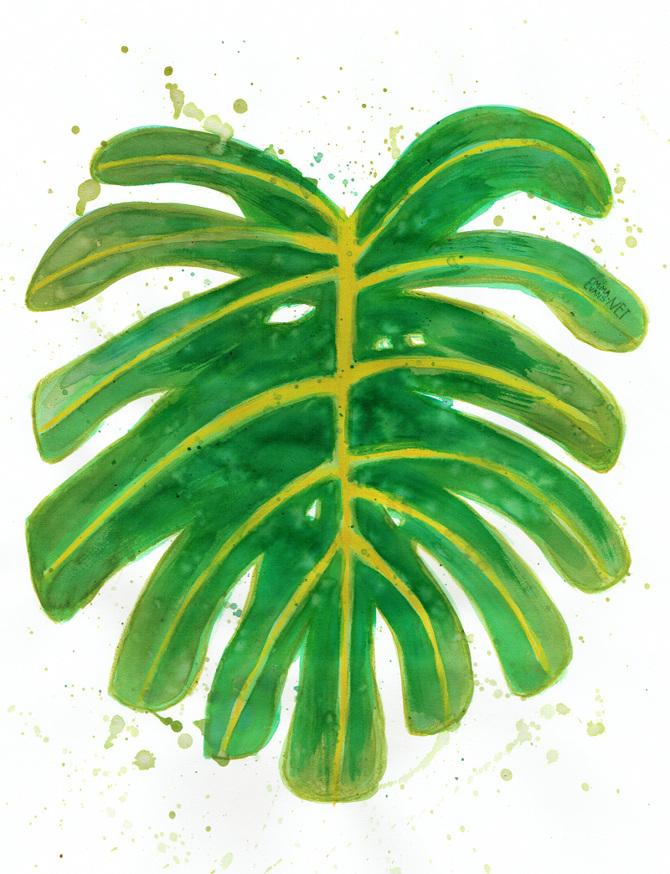 Plant Girl